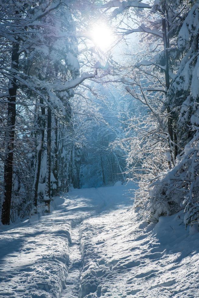 wintertijd foto