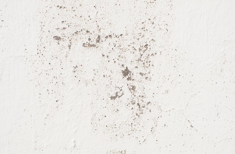 grunge muur textuur foto