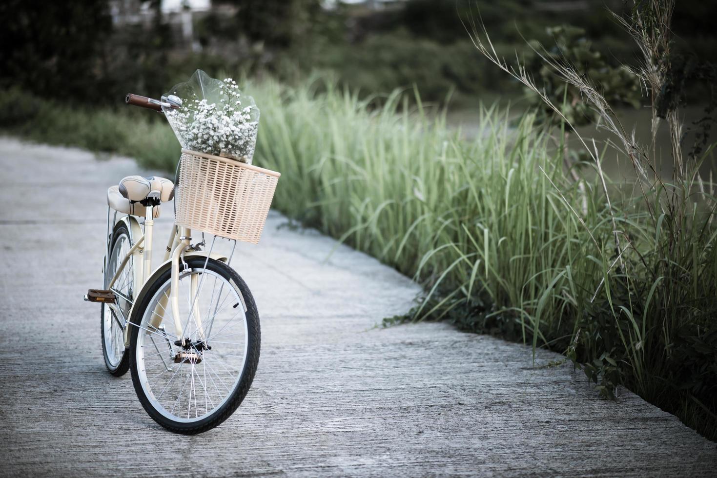 fiets geparkeerd op straat in het park foto