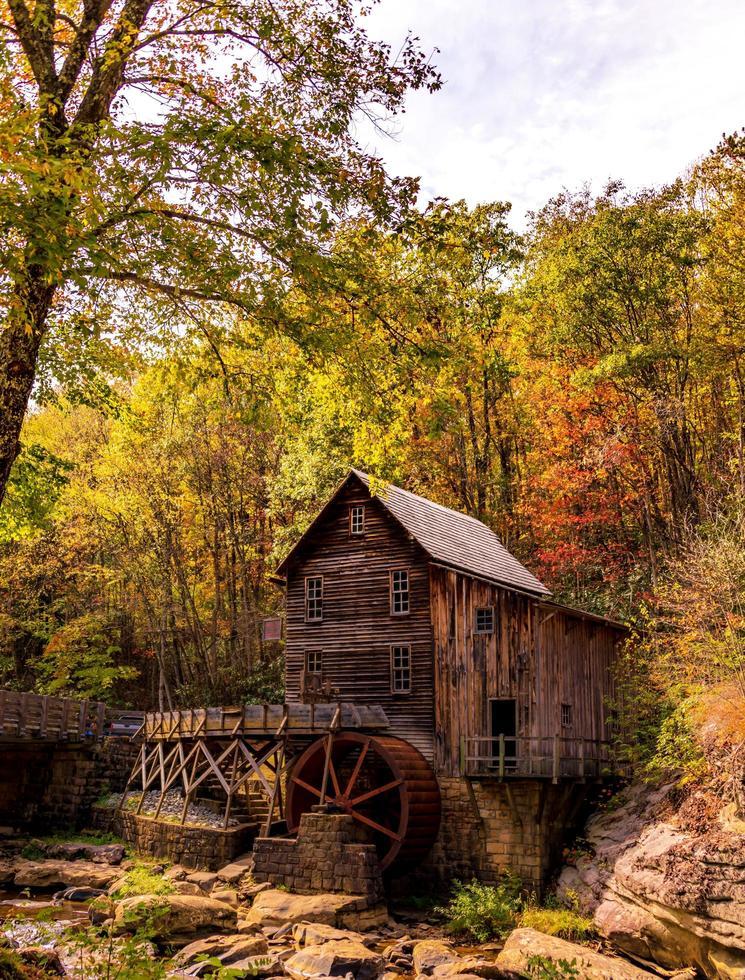 houten huis in het bos foto
