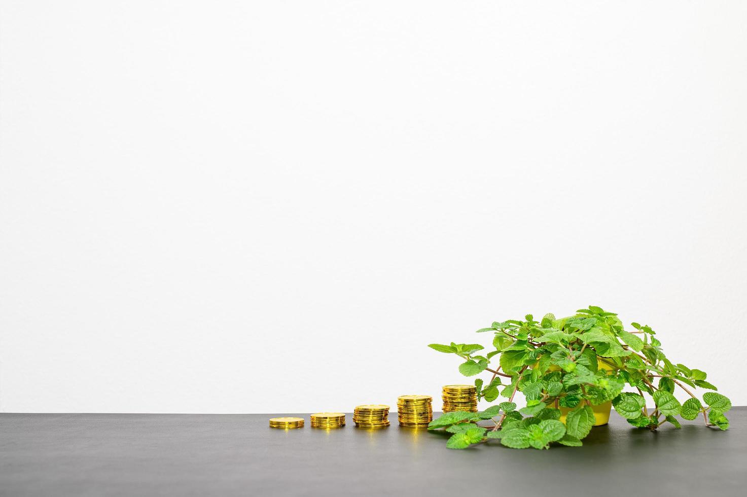 concept van financiële groei foto