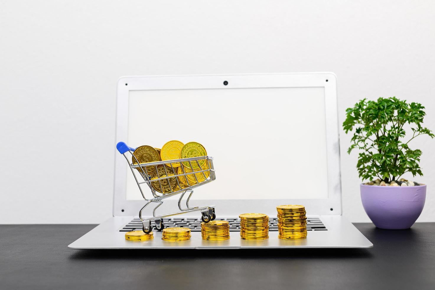 concept van financiële groei met munten en laptop foto