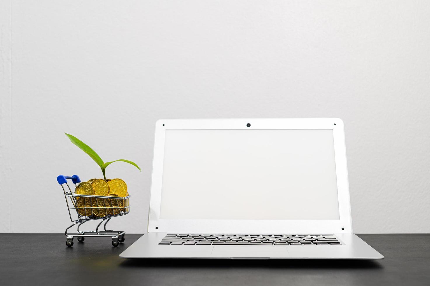concept van financiële groei met laptop foto