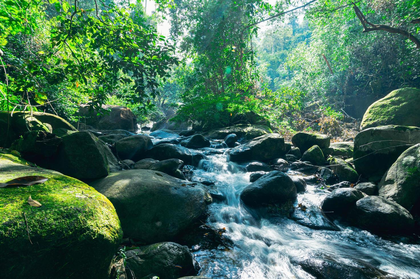 landschap in het Khao Chamao Waterfall National Park foto
