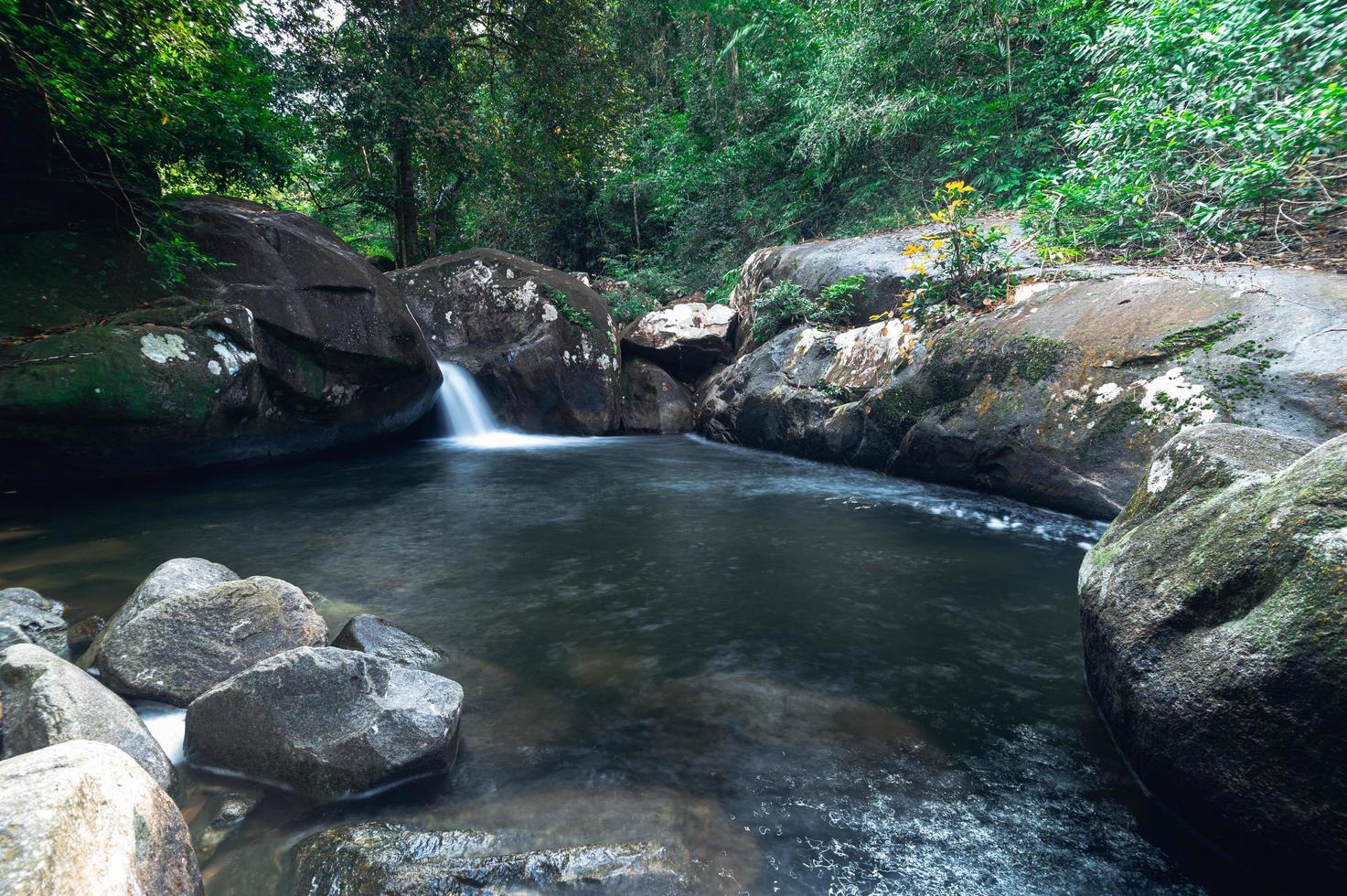rivier in het nationale park van de waterval van khao chamao foto