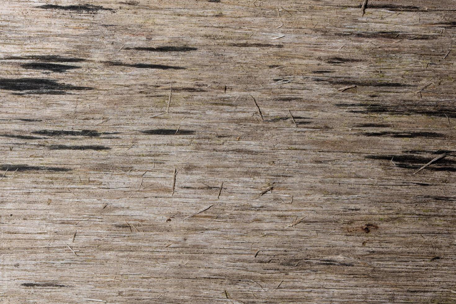 achtergrond houtstructuur foto