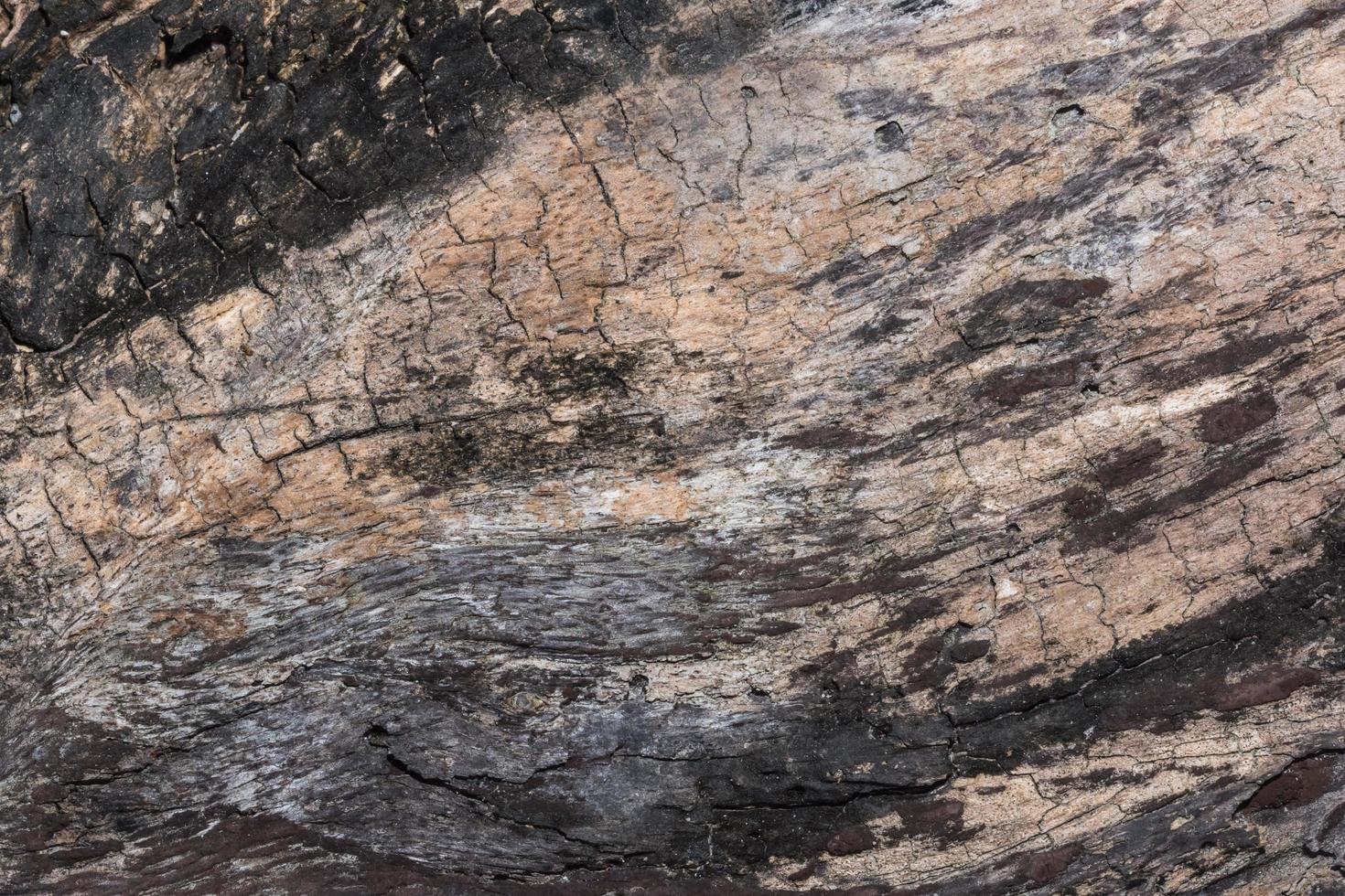houtstructuur achtergrond foto