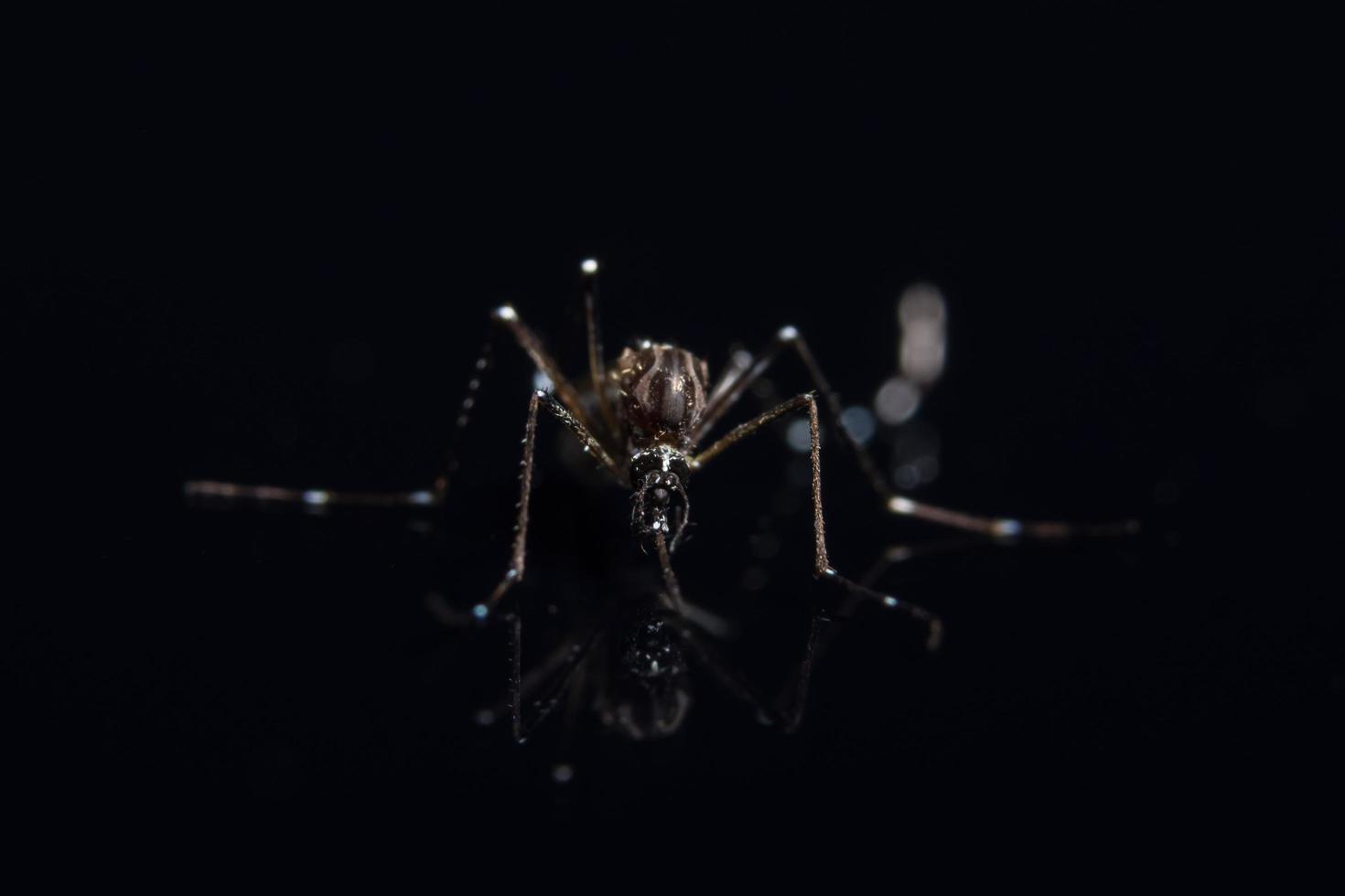 mug op zwarte spiegel foto