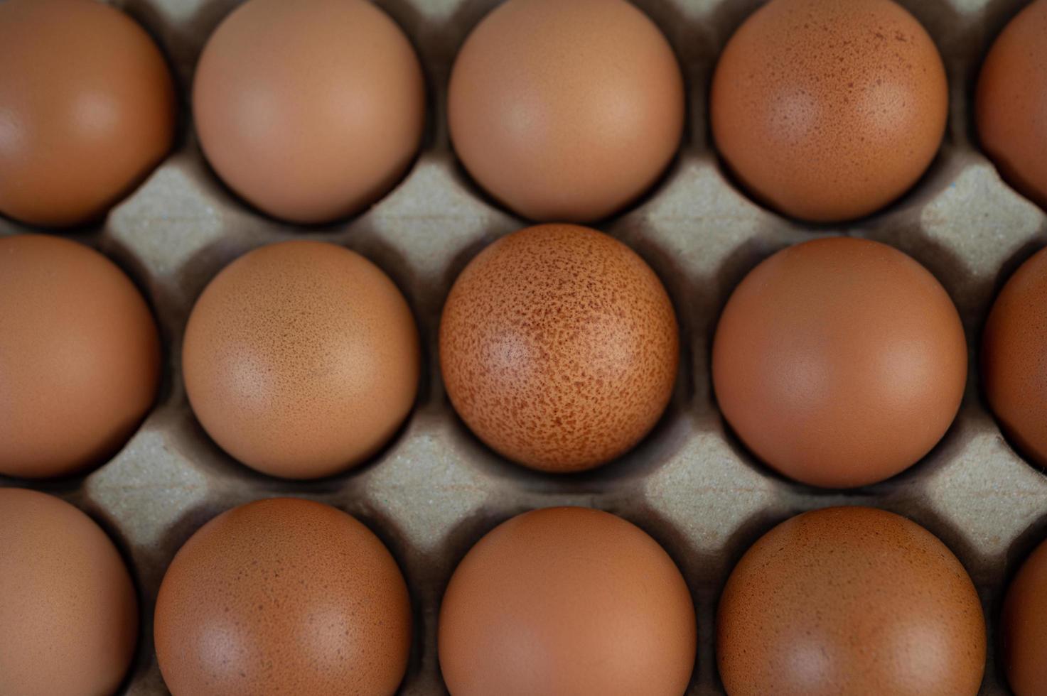 kippeneieren geplaatst op een eierrek foto