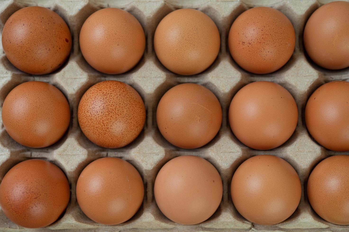 rauwe biologische kippeneieren foto
