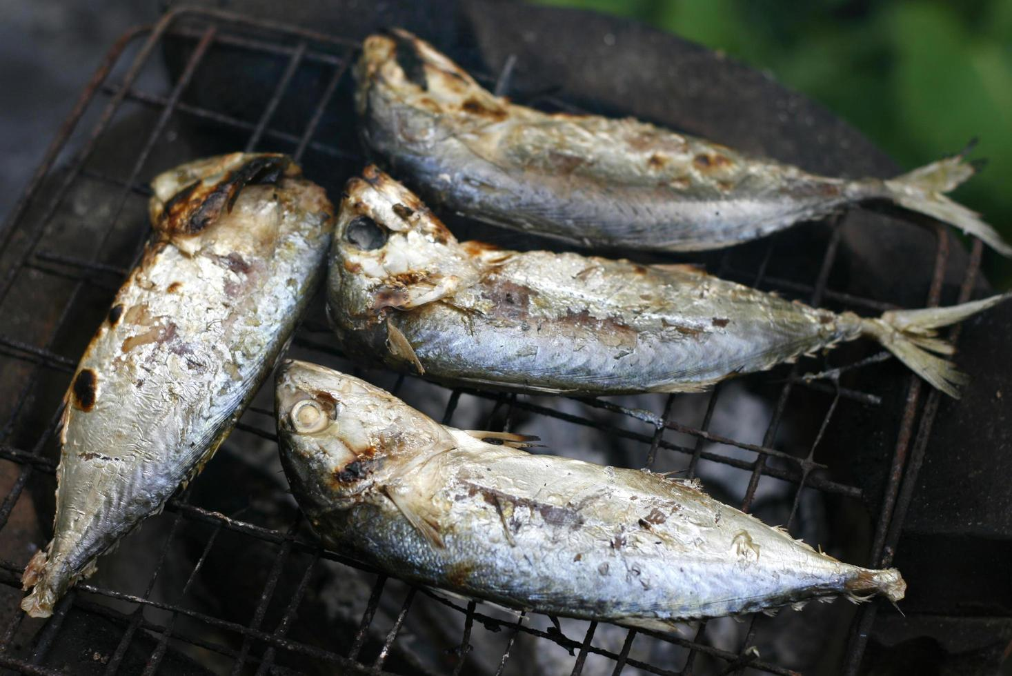 gegrilde makreel op fornuis foto