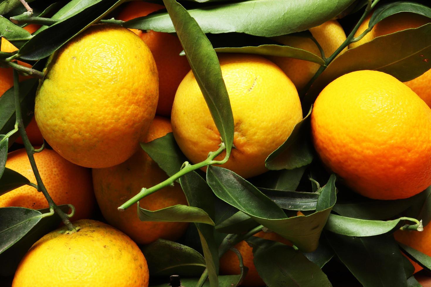 close-up van clementines foto
