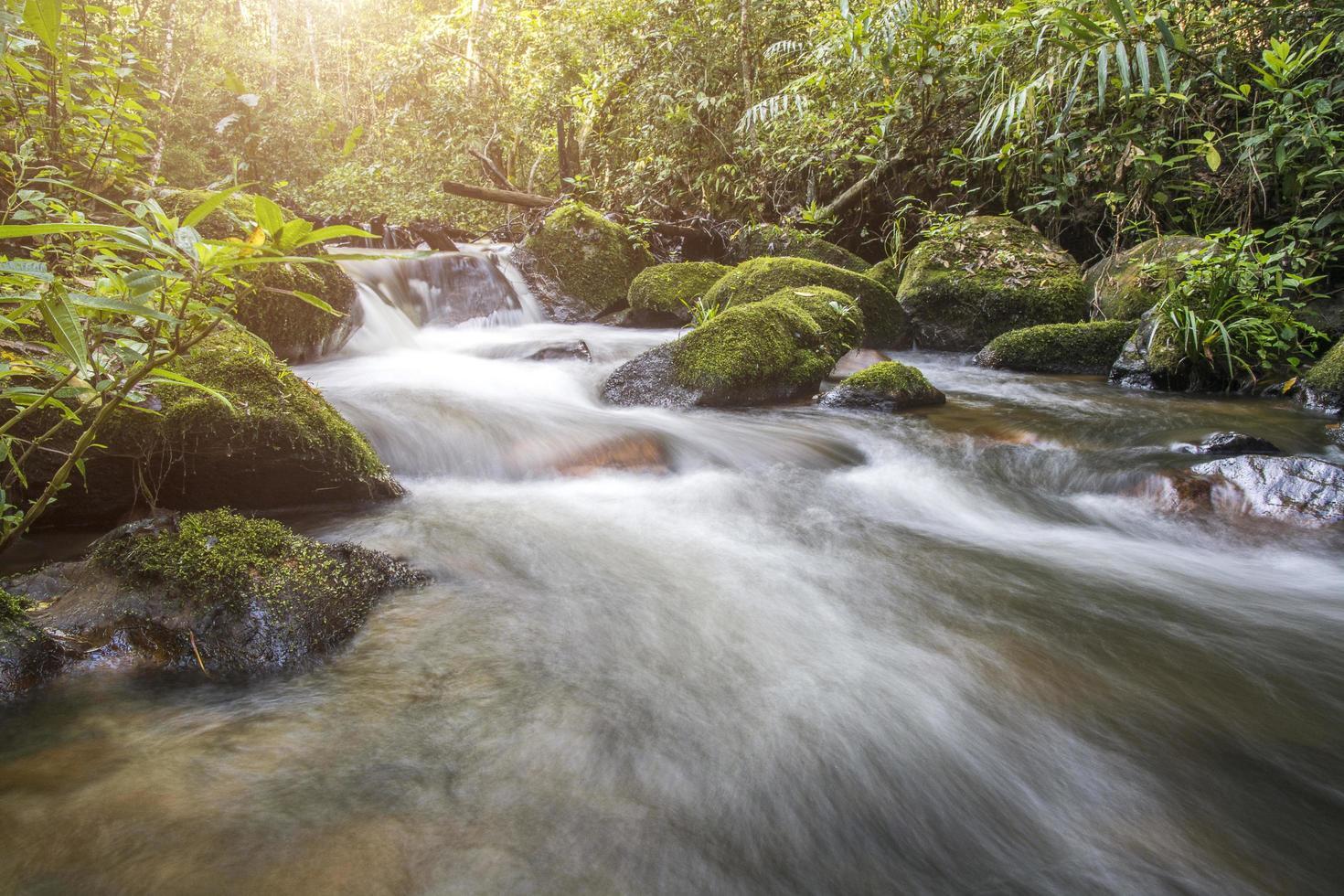 waterval in een groen bos foto