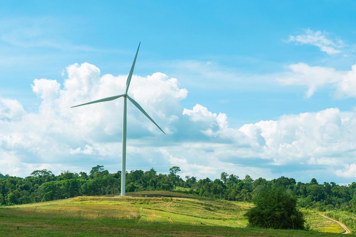 windturbine op de weide foto
