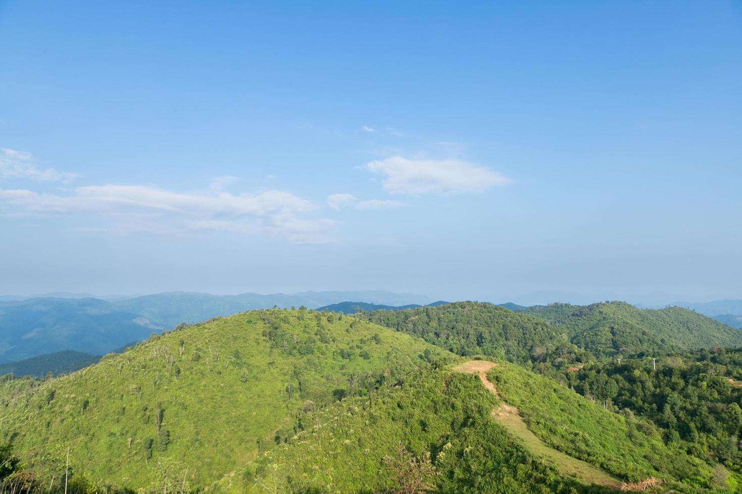 bos en bergen in Thailand foto