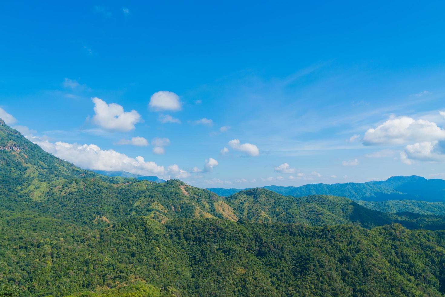 landschap van bos en bergen in Thailand foto