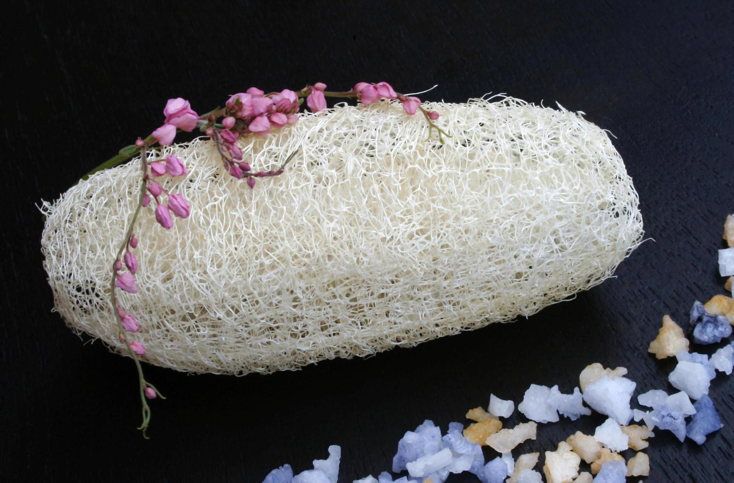 natuurlijke luffa-spons foto