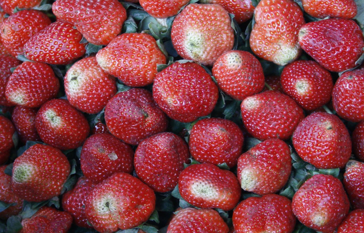 een stuk aardbeien foto
