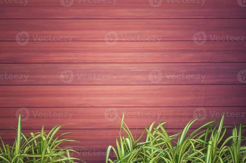 houtstructuur met groene planten foto