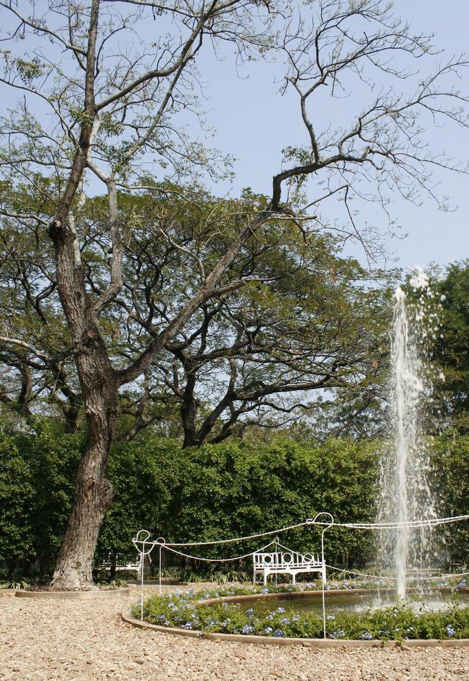 fontein in een tuin foto