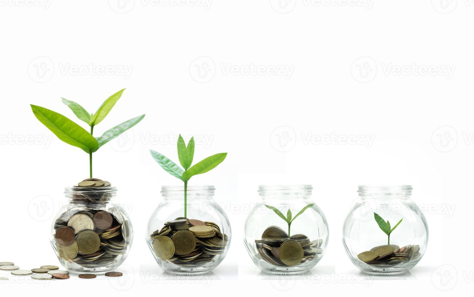 bomen die opgroeien in glas met munten op witte achtergrond foto