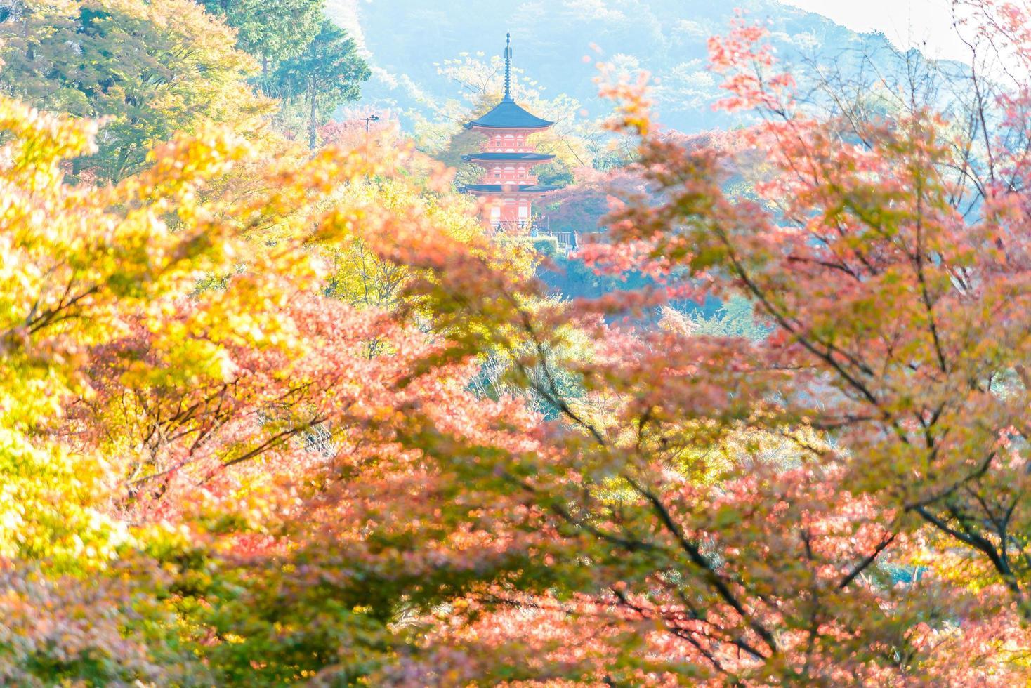 kiyomizu dera-tempel in kyoto, japan foto