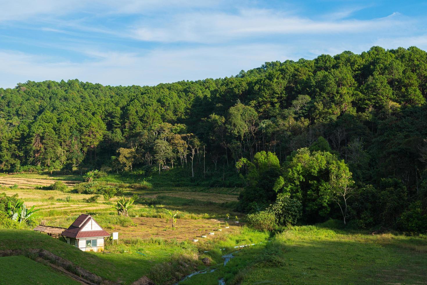 klein huis op het gazon in Thailand foto