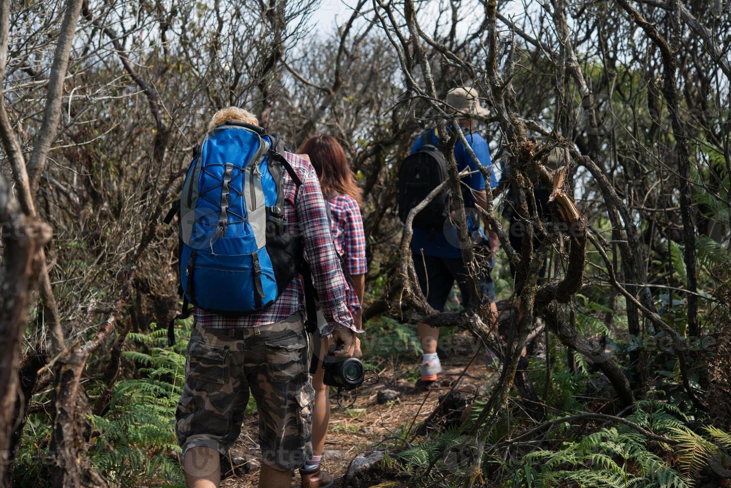 close-up van vrienden lopen met rugzakken in bos vanaf achterkant foto