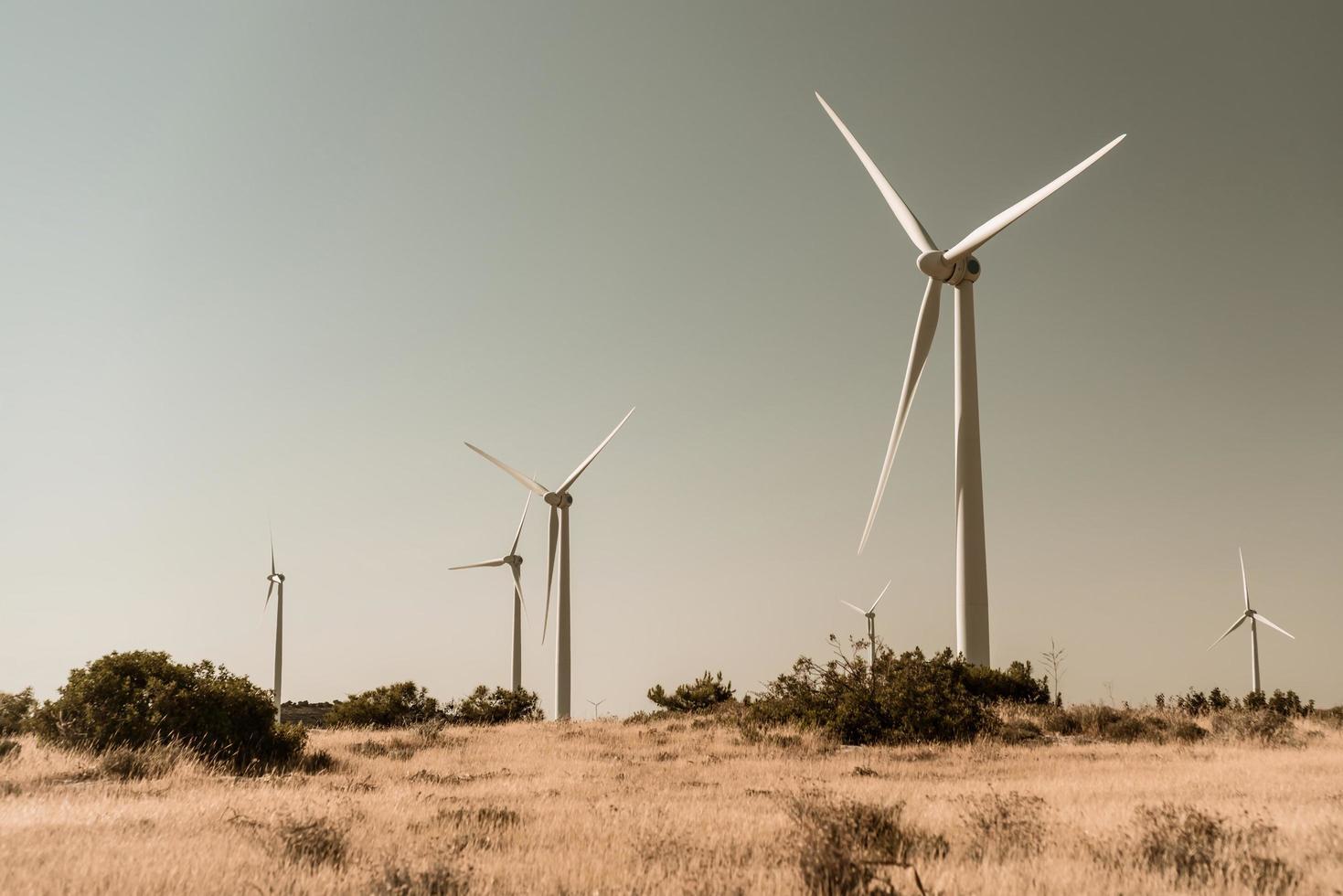 windturbines in een landelijke omgeving foto