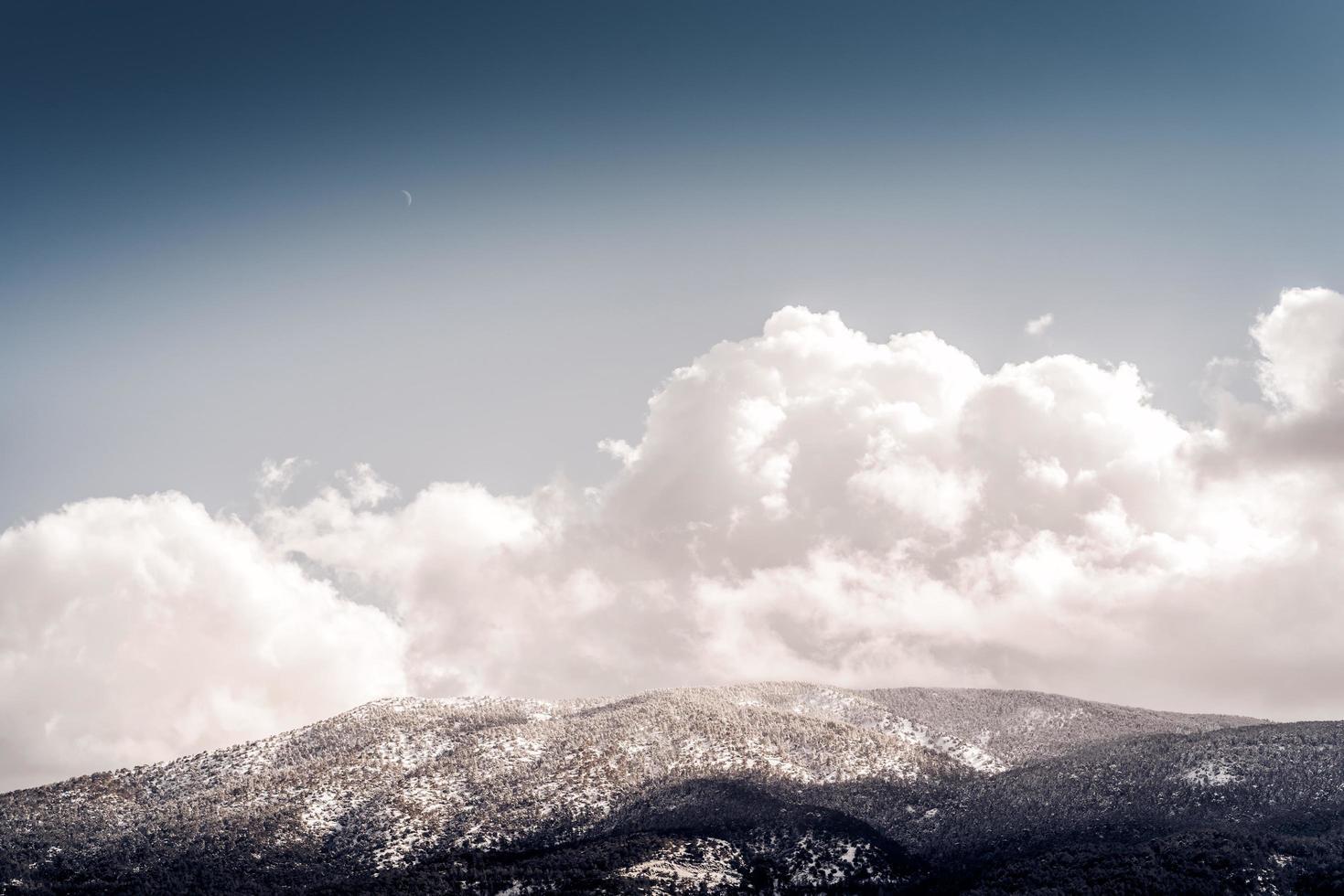besneeuwd bos met berglandschap foto