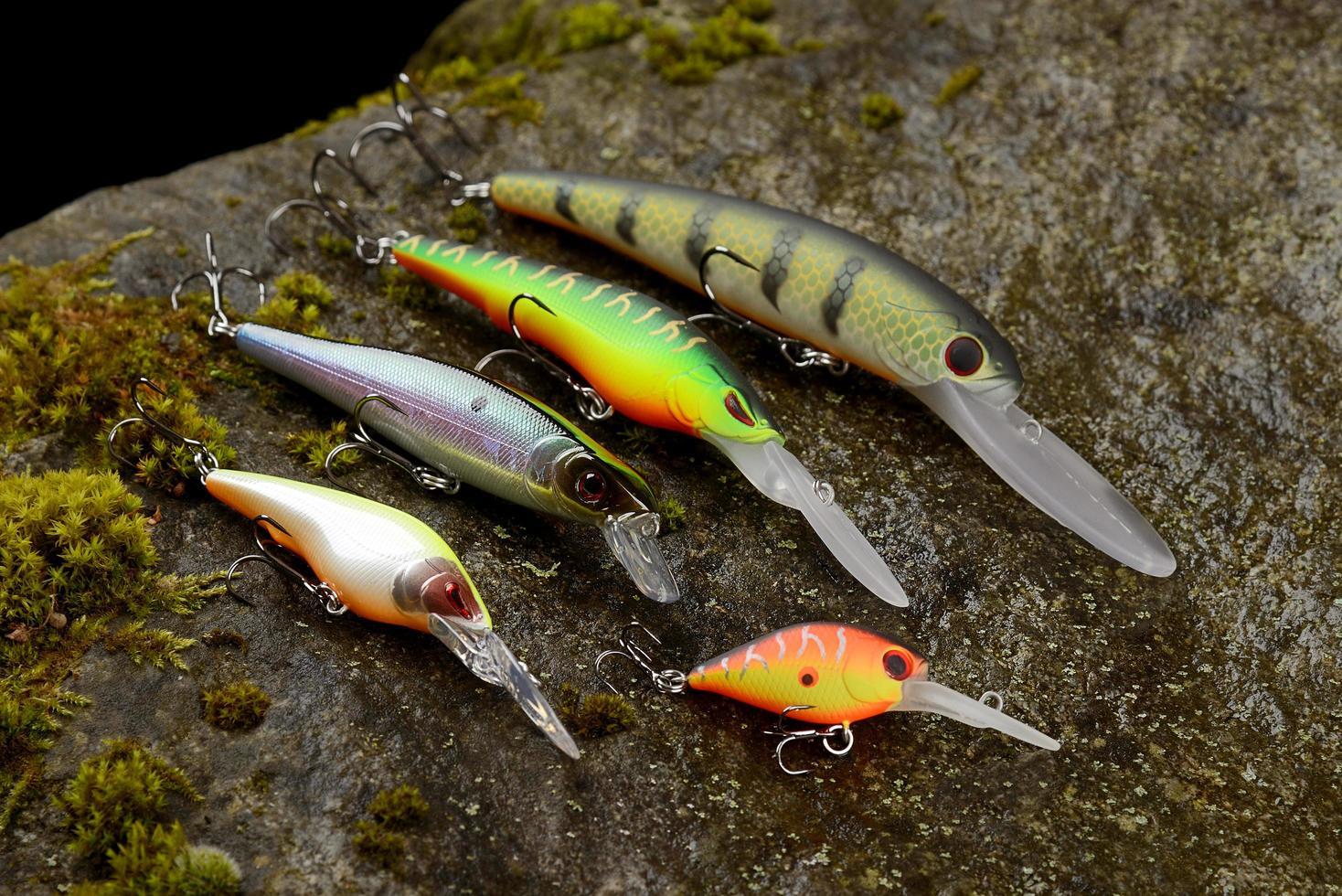 groep vissen lokt wobblers op een natte steen met mos foto