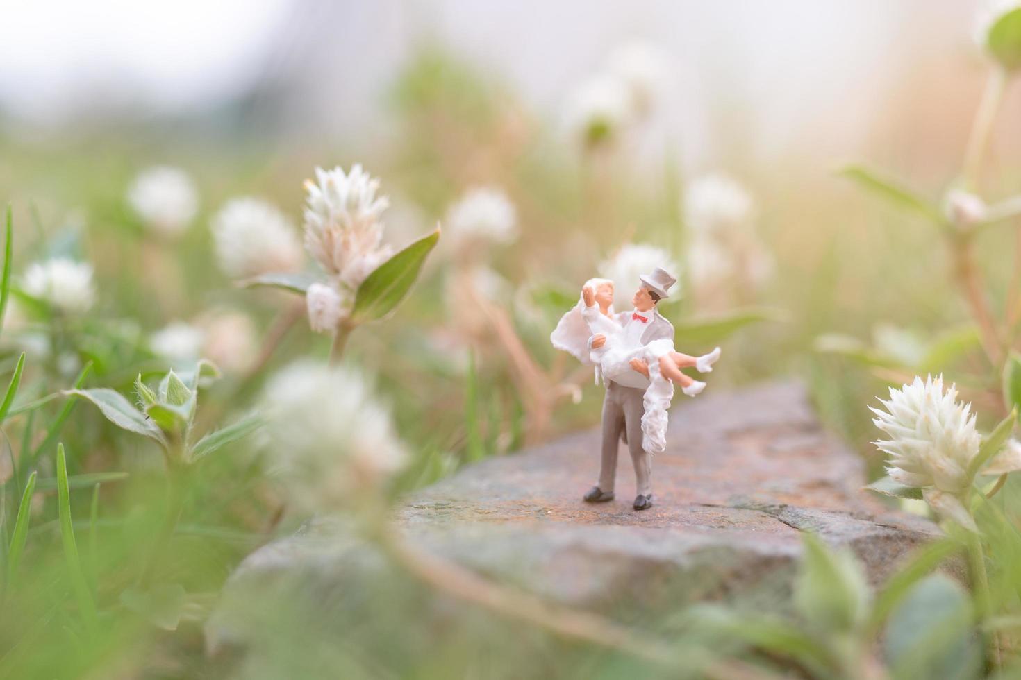 miniatuurpaar in de tuin, Valentijnsdagconcept foto