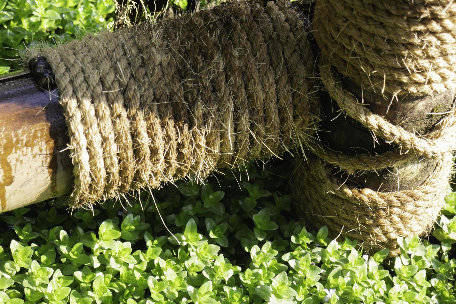 touw in de tuin foto