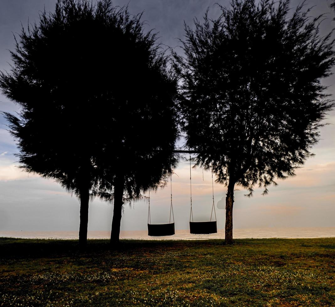 hout schommelt onder de grote boom naast zee strand natuur achtergrond foto