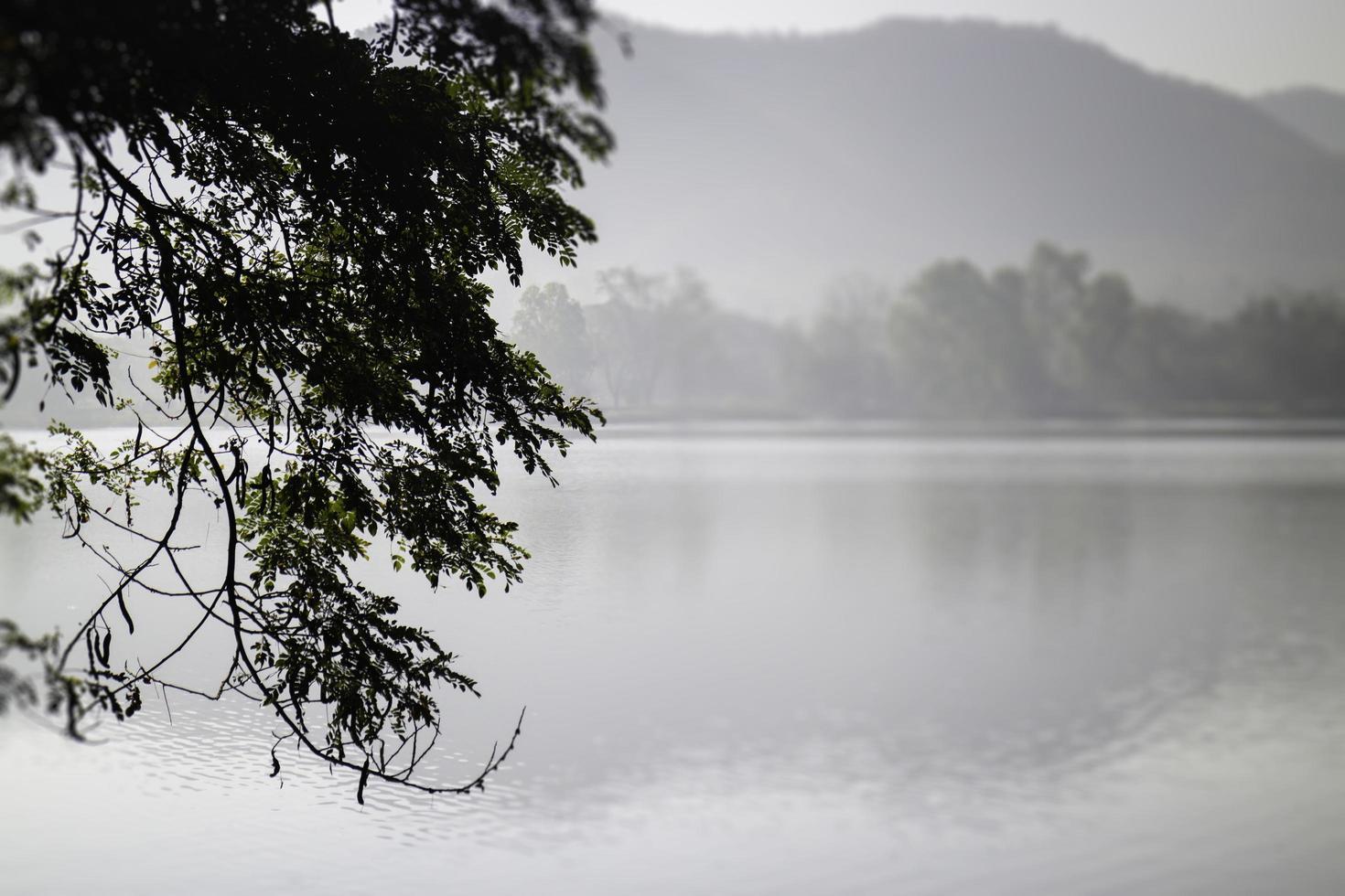 uitzicht op een meer bij zonsopgang foto