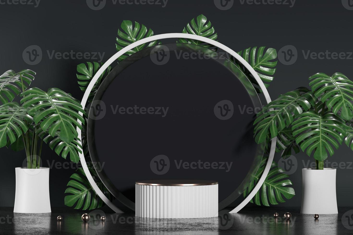 wit podium voor productvertoning showcase met monstera-pot foto