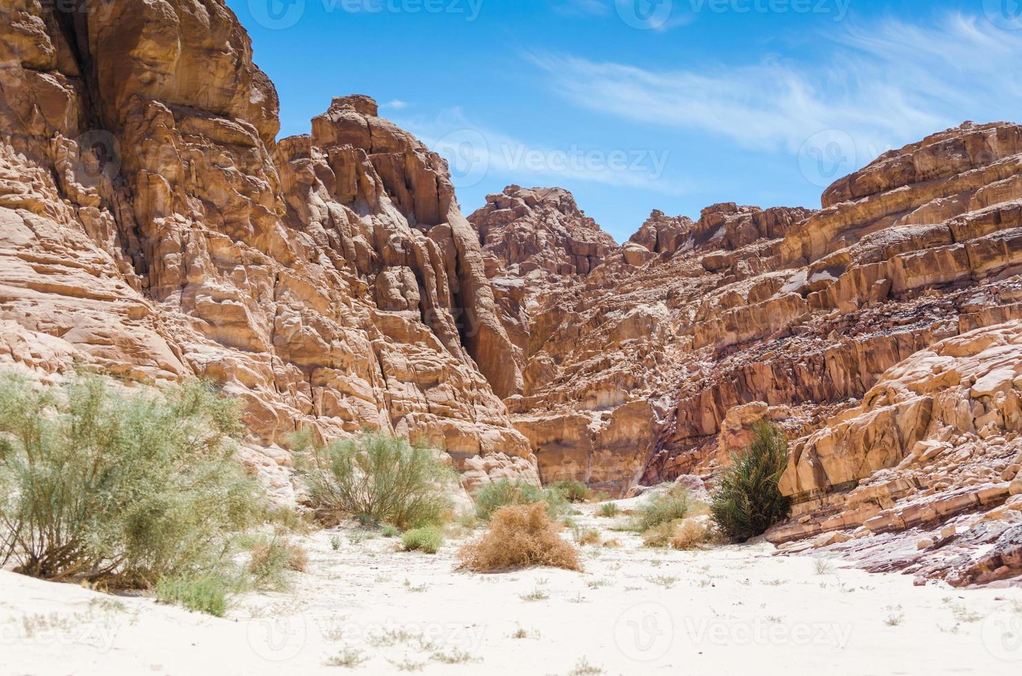 rotsachtige woestijn canyon foto