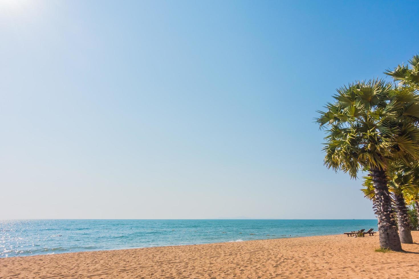 prachtig strand en zee met palmboom foto