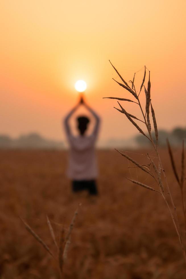 zonsopgang yoga op de boerderij foto