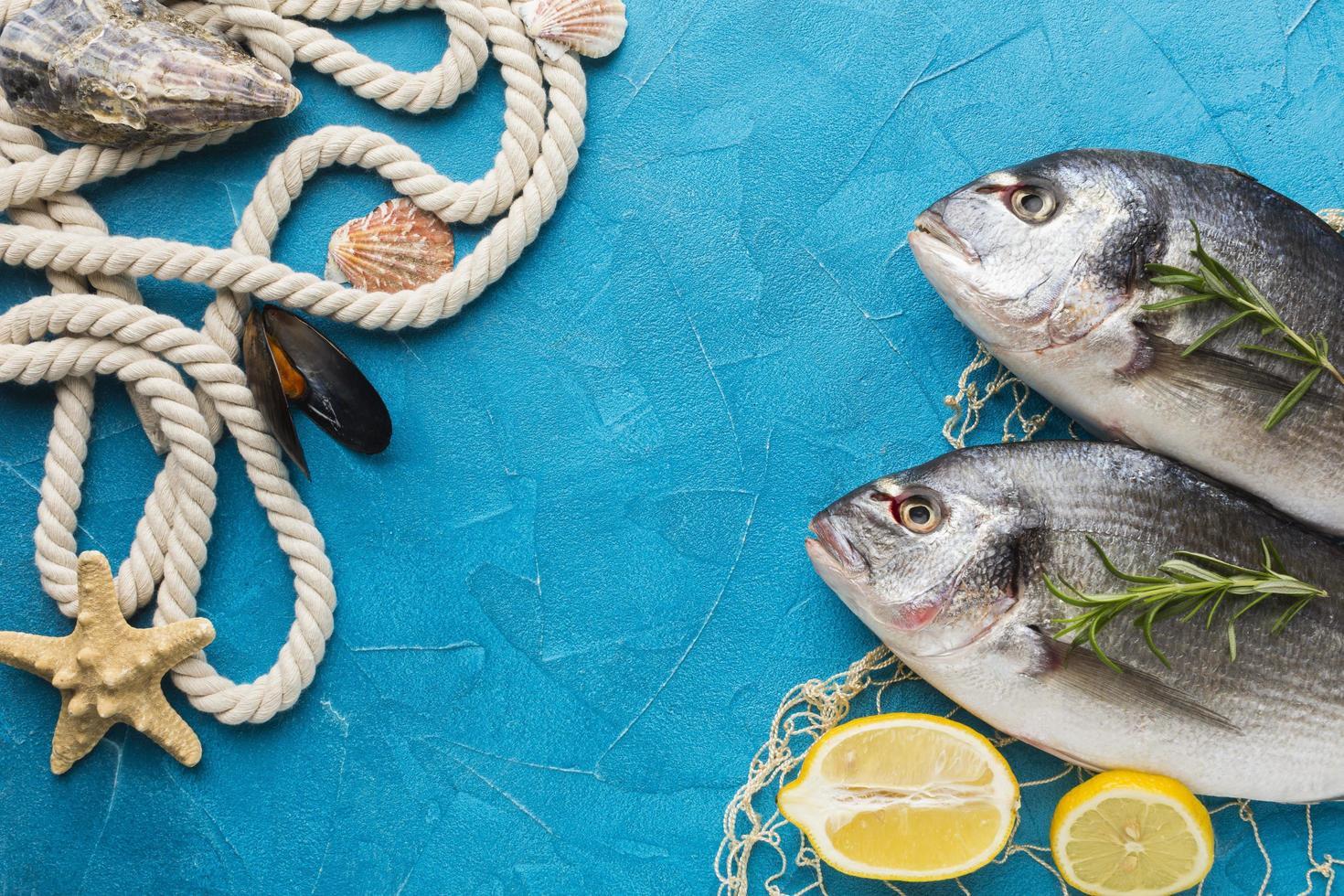 vis arrangement met touw bovenaanzicht foto