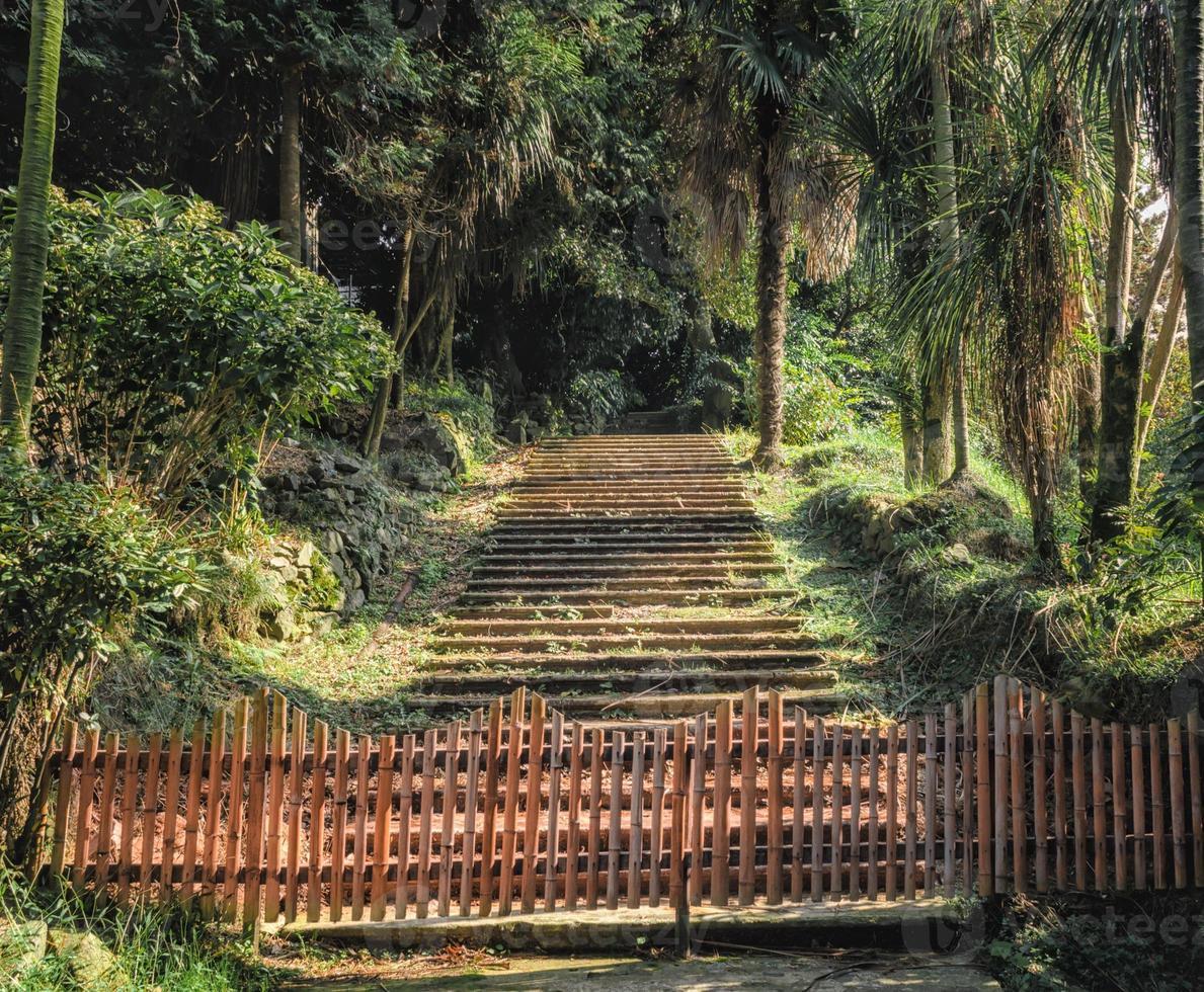 stenen trap en brug in het park foto
