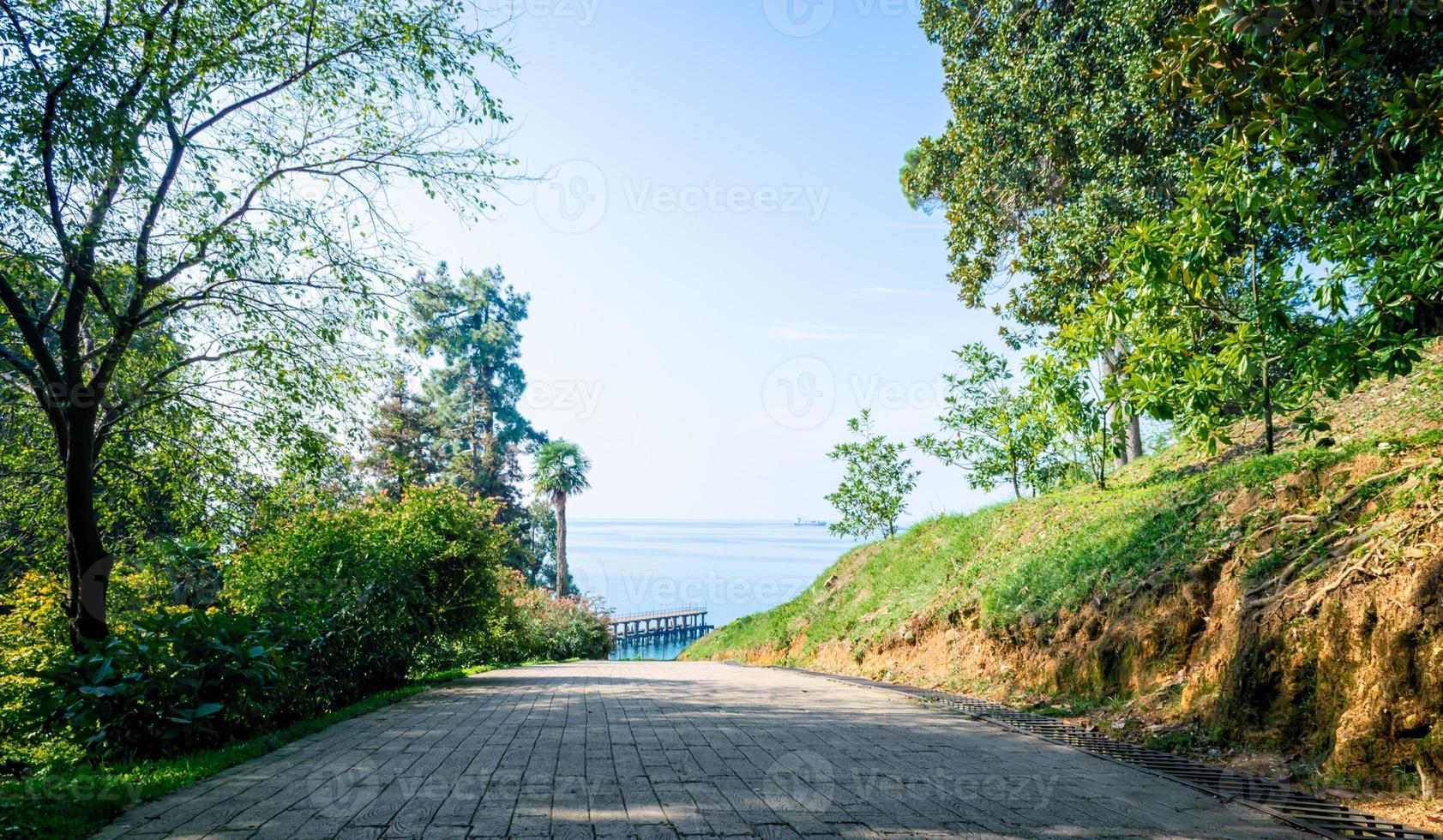 weg in een park met uitzicht op de zee foto