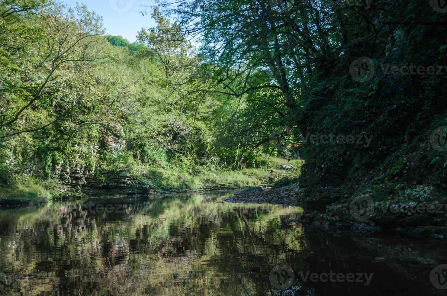 groene bomen en een rivier foto