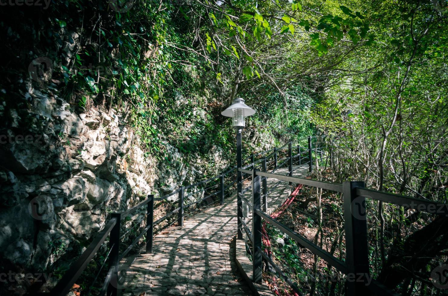 brug in een bos foto