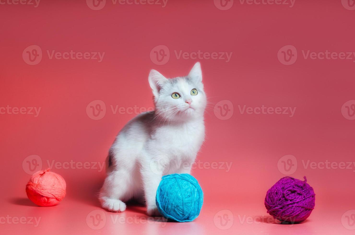 grijze en witte gestreepte kat met bollen van garen foto