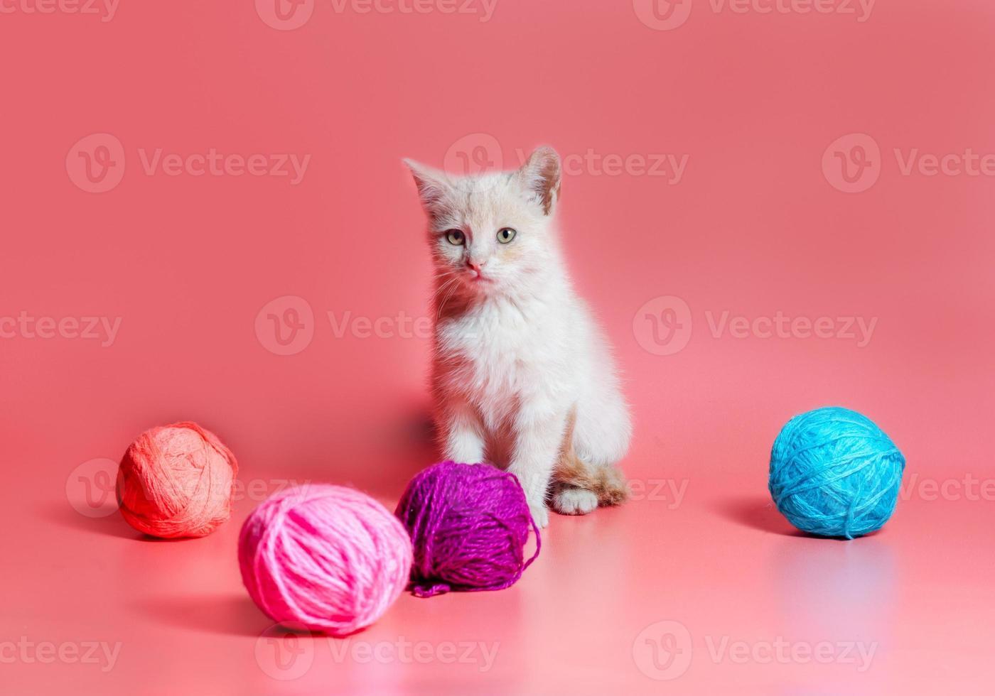 kitten met garen foto