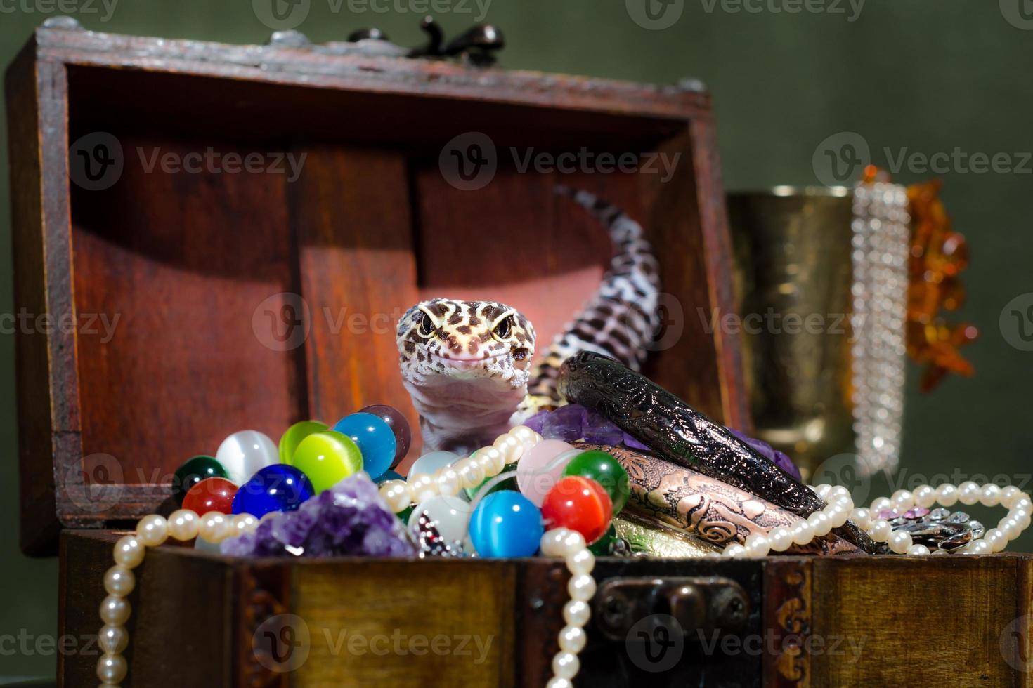 hagedis met juwelendoos foto