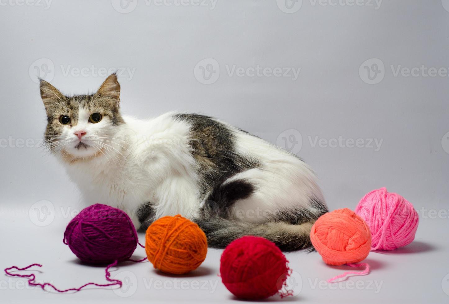 kat met garen op een grijze achtergrond foto