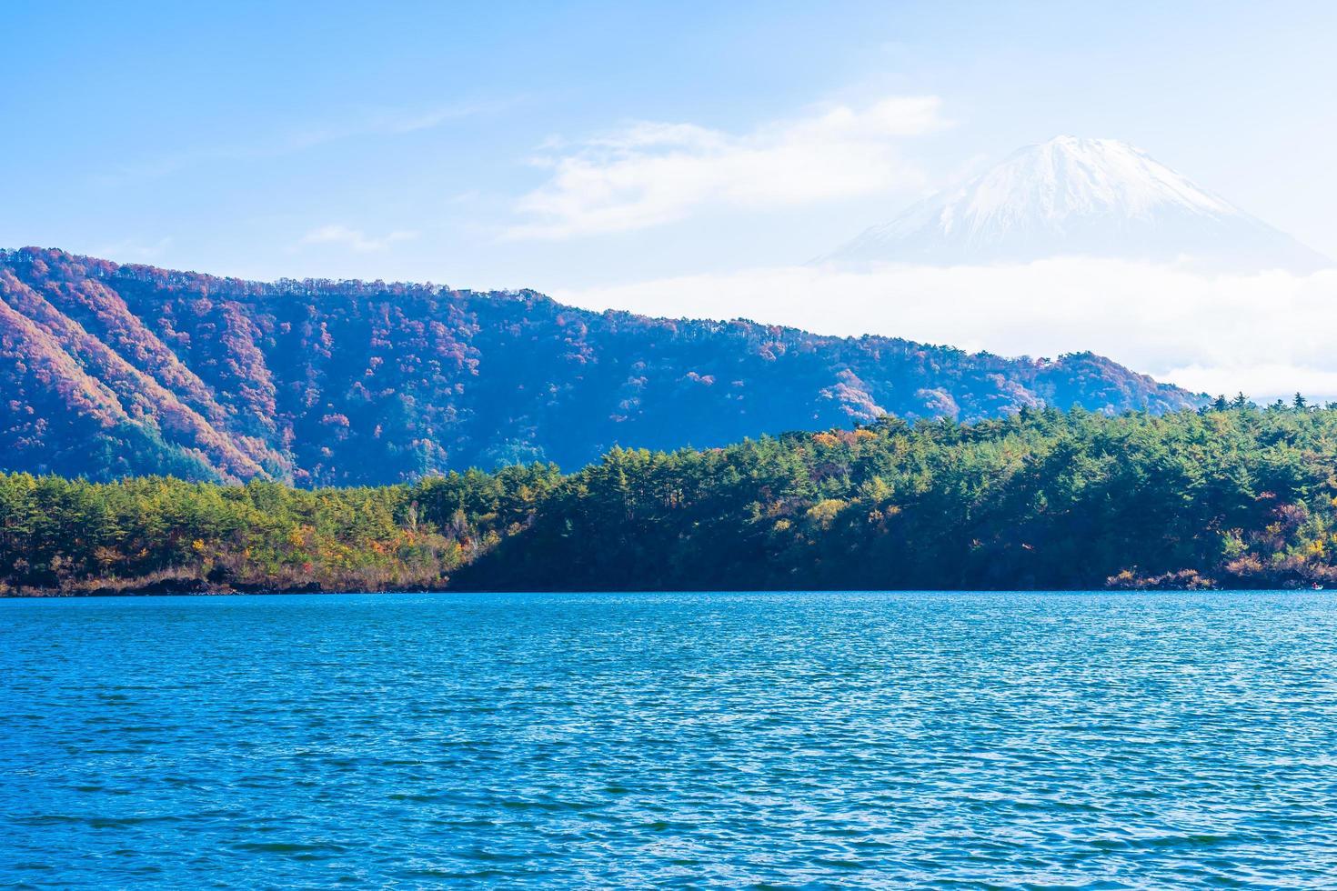 prachtig landschap op mt. fuji, japan foto