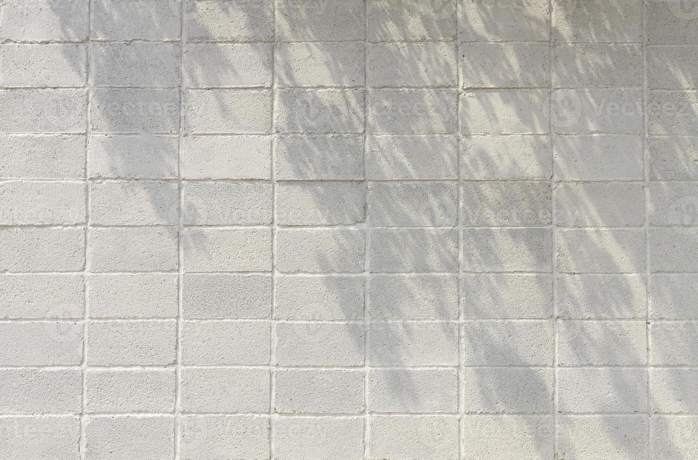 kopieer ruimte vooraanzicht van witte bakstenen muur met boomschaduwen foto